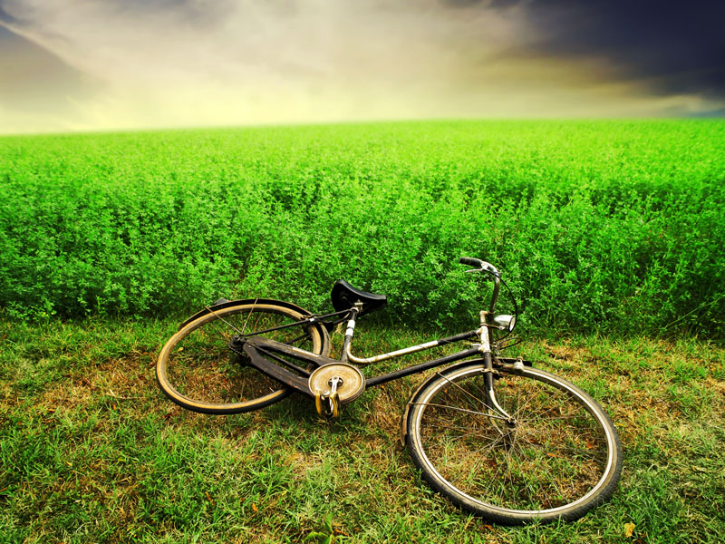 "Velika ""zelena"" akcija"